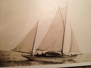 sea-harmony-2